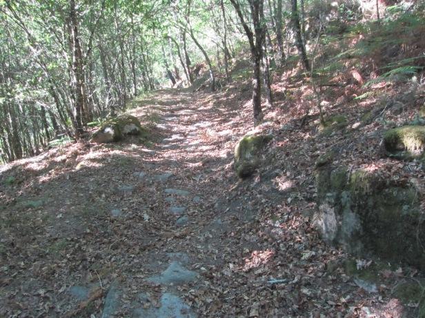 Camino de piedras al lado de Castro Cavadoso